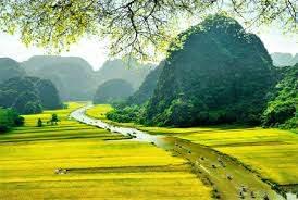 Chuyển hàng từ HCM đi Ninh Bình